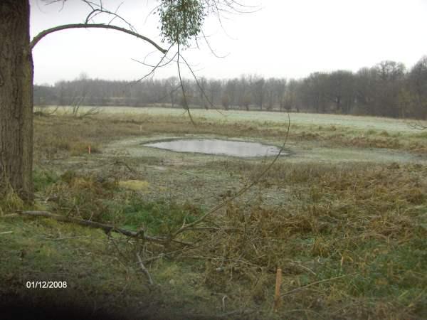 Niedrigwasser im Bereich der Röthe