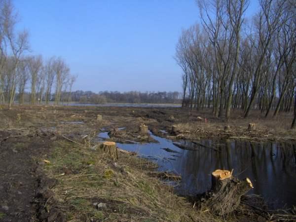 Bauvorbereitungen zur Elbebrücke Schönebeck